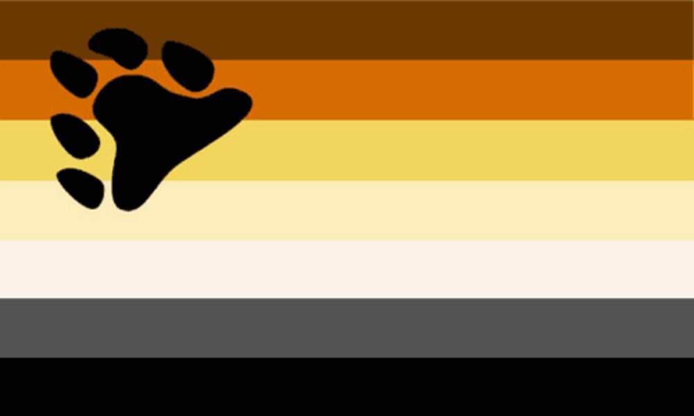 Le drapeau bear