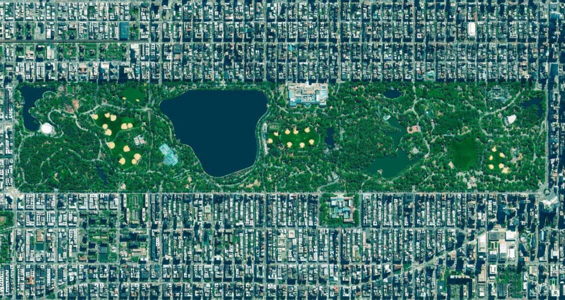 New York, Etats-Unis : une icône au cœur de la cité
