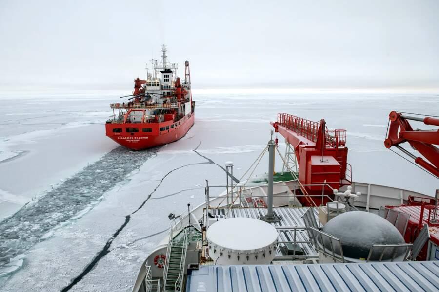 Aux confins du pôle Nord