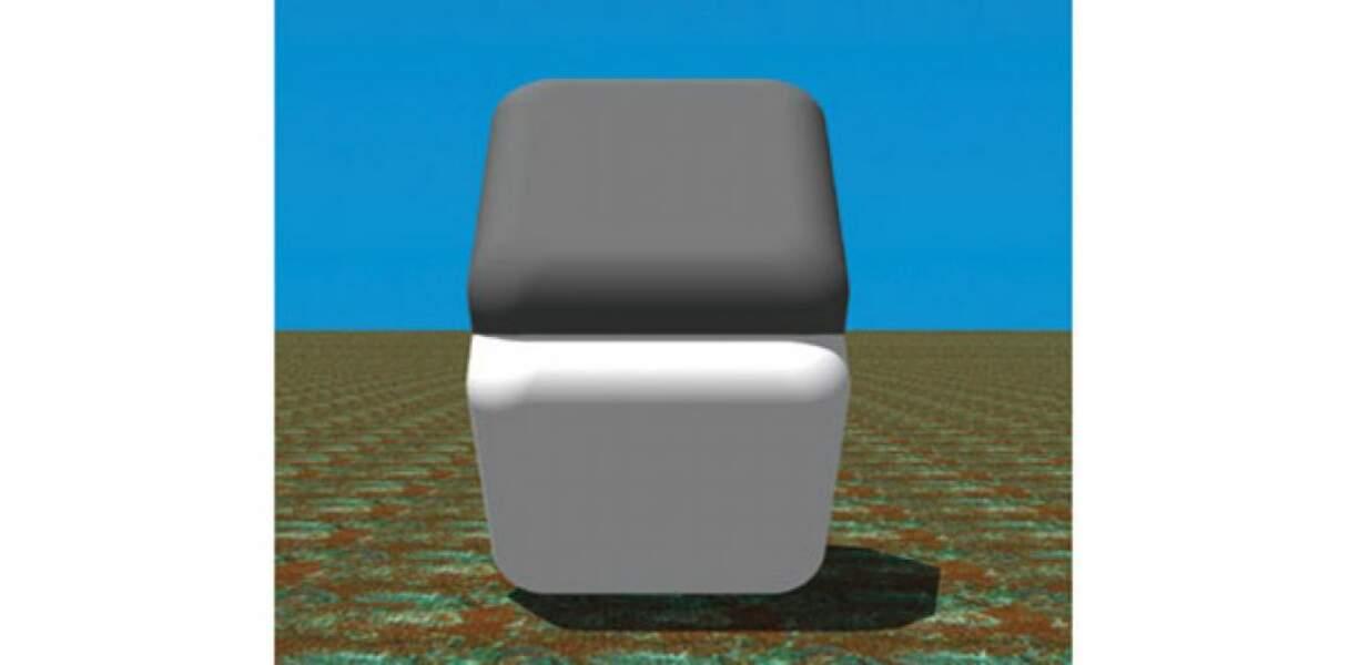 Contrairement à ce que vous croyez, ces deux quadrilatères sont de la même couleur