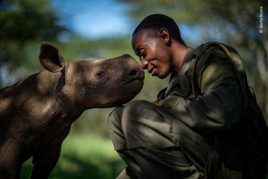 L'amitié du rhinocéros et de l'homme