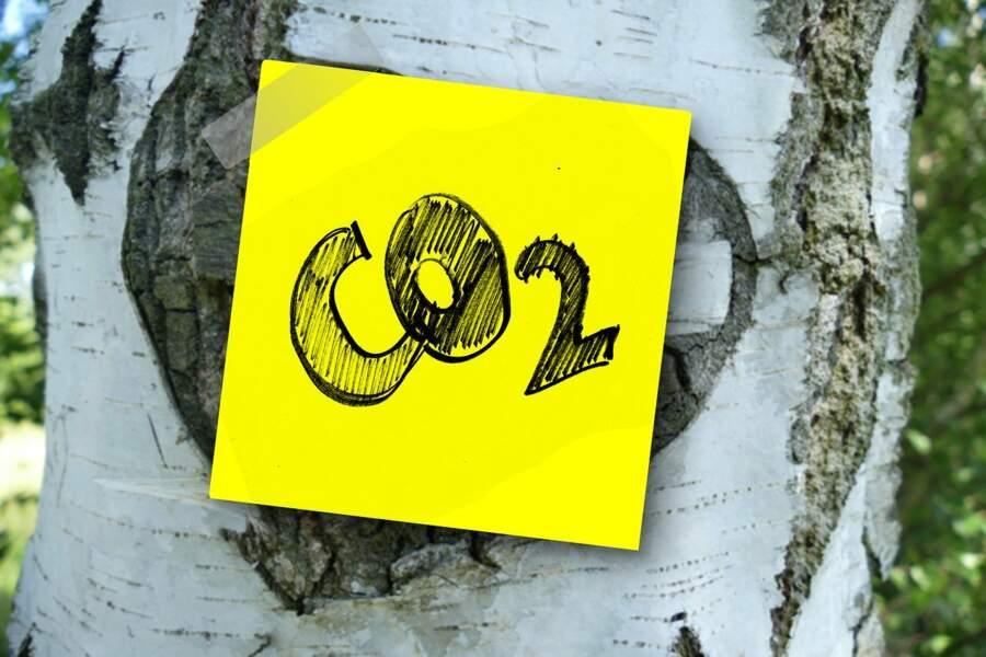 Horizon 2025, énergie : recycler le CO2 en carburant