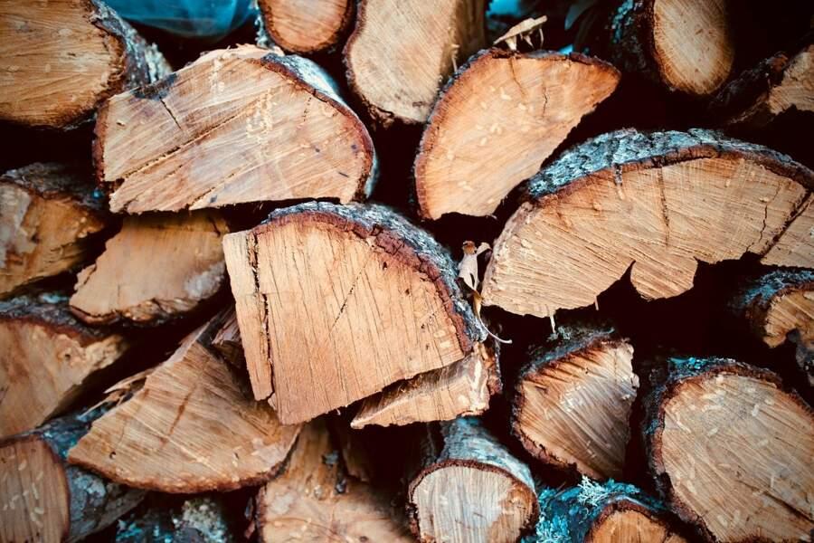 Un tas de bois