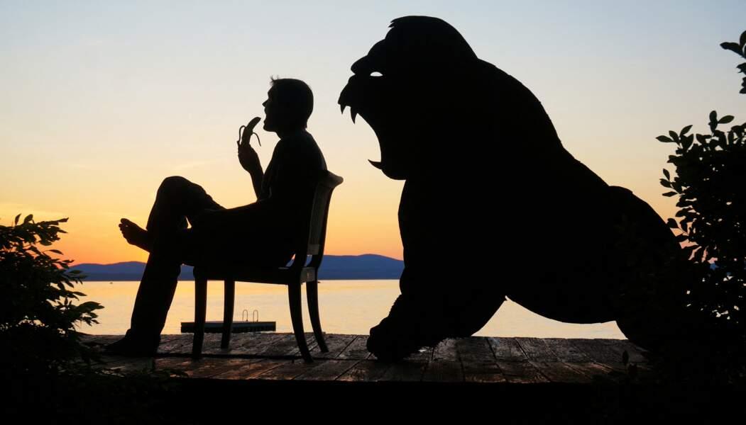 John Marshall mange une banane devant un gorille affamé