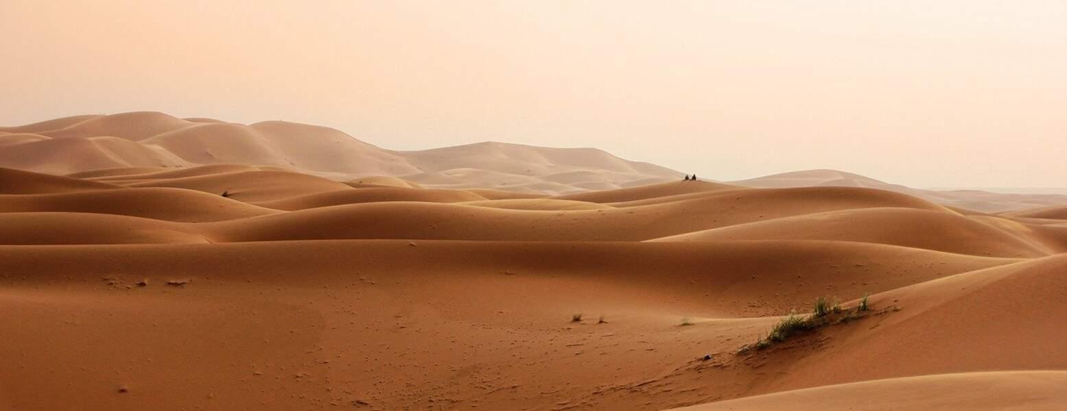 Sahara- 9 065 000 km²
