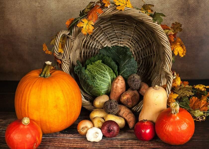 3. Légumes, légumes, légumes