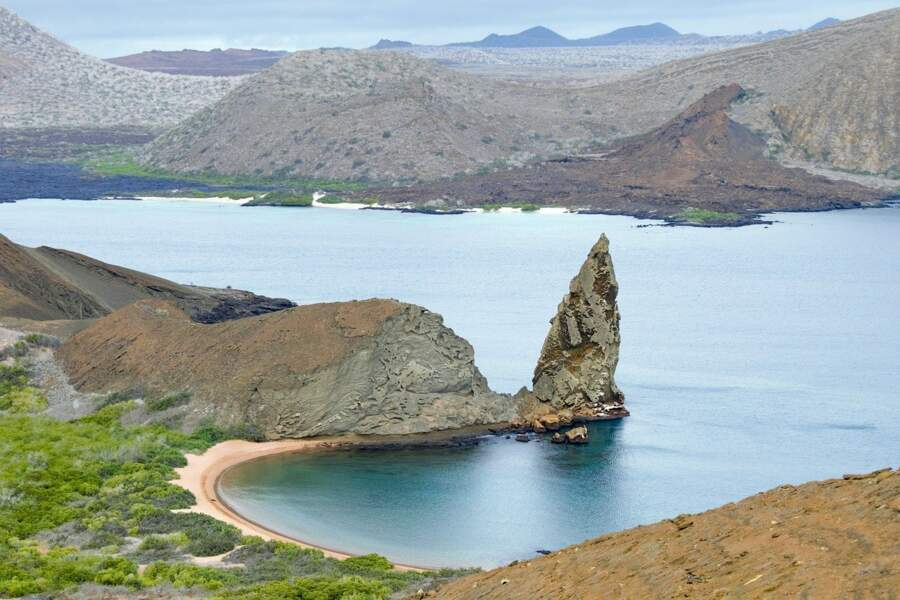 Découverte de trente espèces d'invertébrés aux Galapagos