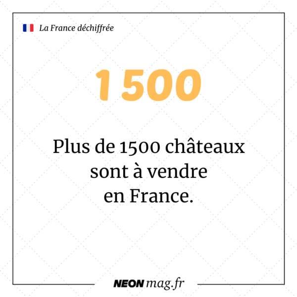 Plus de 1 500 châteaux sont à vendre en France