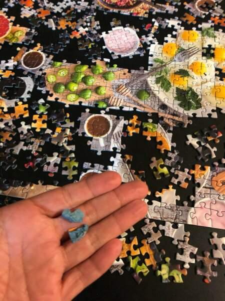 14. Son chat a mangé la dernière pièce de son puzzle