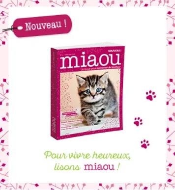 Offre de lancement Miaou : abonnez-vous vite !