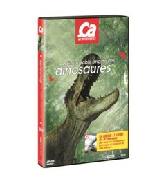 VIDEO - DVD CAM DINOSAURES