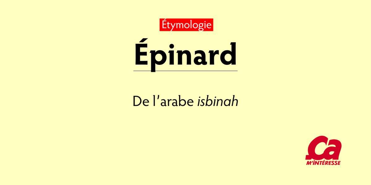 """Épinard, de l'arabe isbinah, """"épinard"""""""