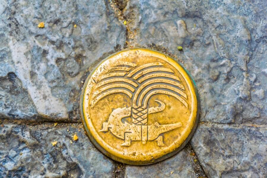 Nîmes et les crocodiles, une longue histoire