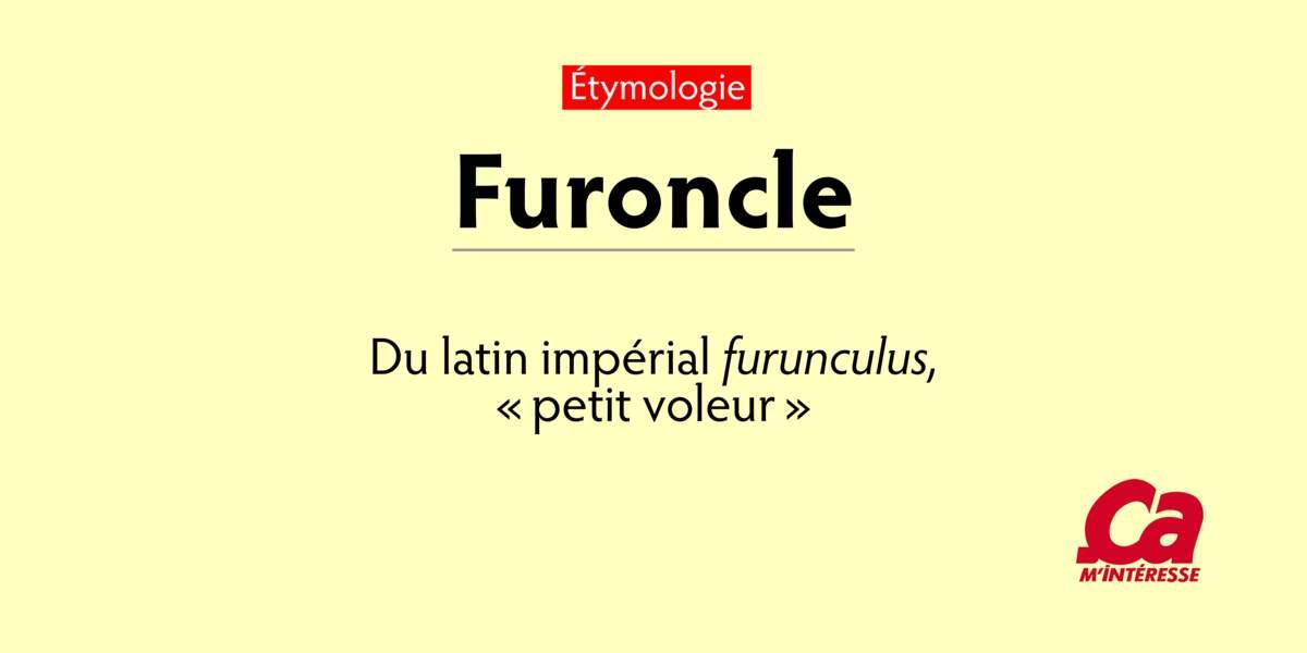 """Furoncle, du latin impérial furunculus, """"petit voleur"""""""