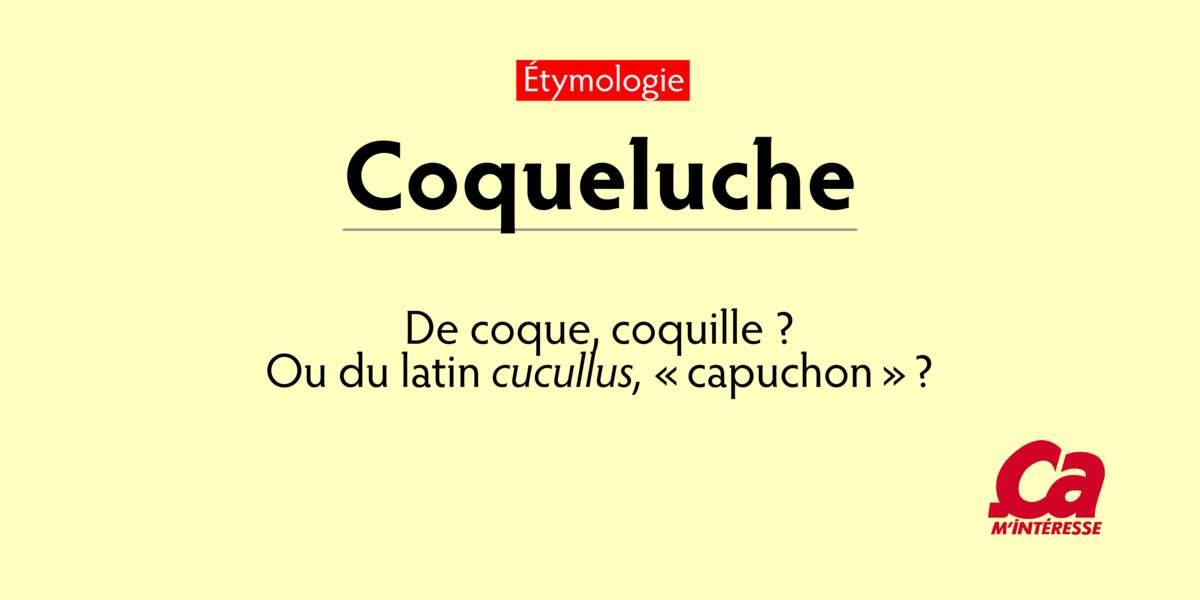 Coqueluche, de coque, coquille? ou du latin cucullus, capuchon?