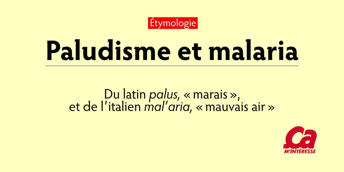 "Paludisme, du latin palus, ""marais"", et malaria, de l'italien mal'aria, ""mauvais air"""