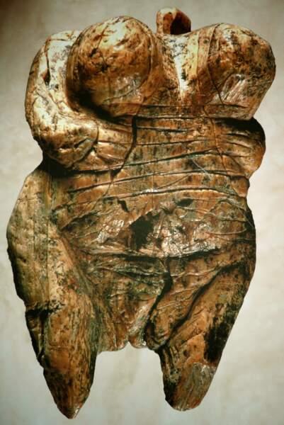 2009  La plus ancienne représentation humaine