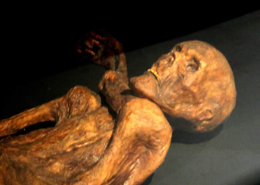 1991 La découverte d'Ötzi, l'homme des glaces