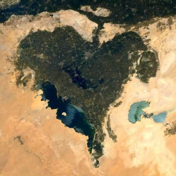 L'Oasis du Fayoum, en Egypte