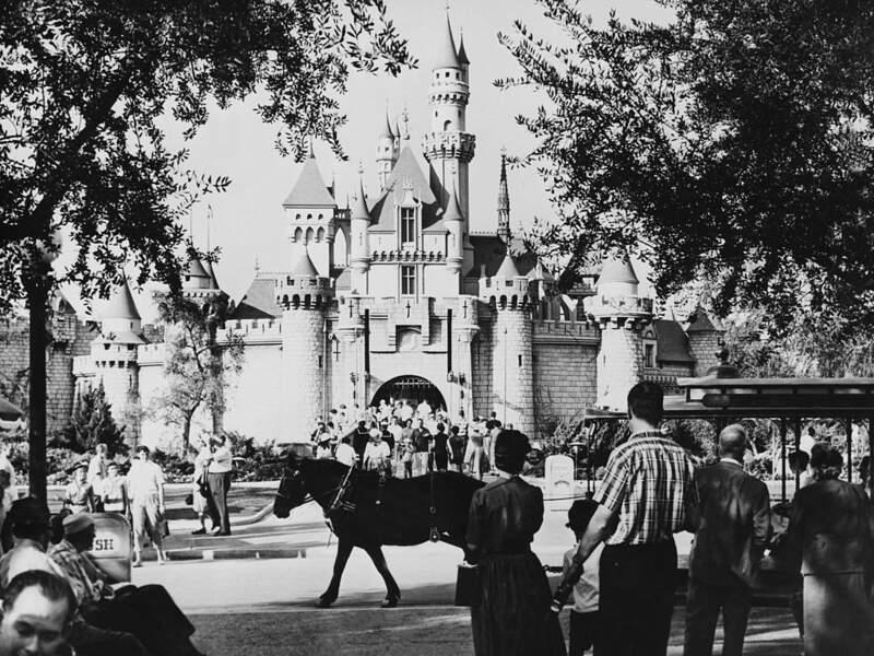 10/ Il a une planque à Disneyland