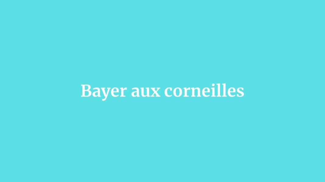 Bayer aux corneilles