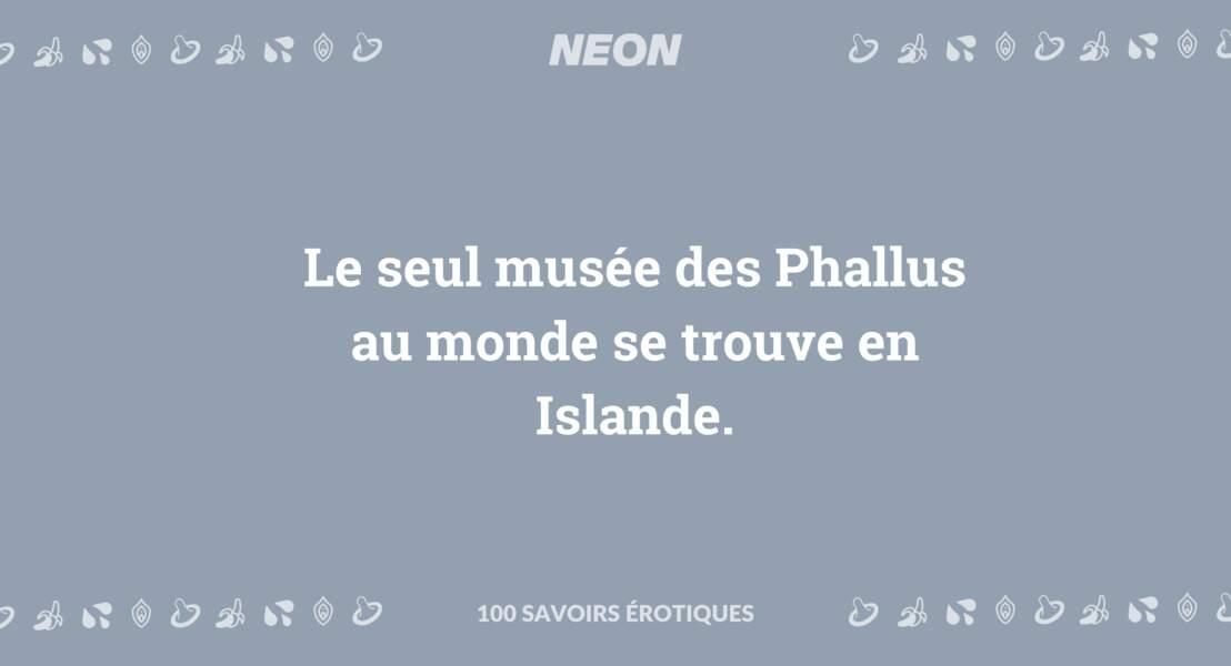 Le seul musée des Phallus au monde se trouve en Islande.