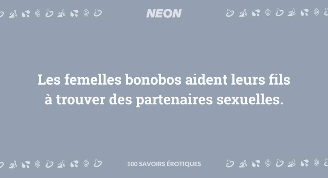 Les femelles bonobos aident leurs fils à trouver des partenaires sexuelles.