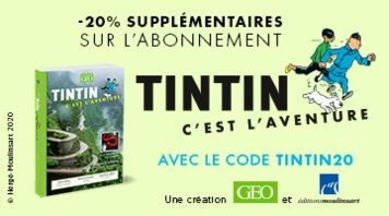 Découvrez Tintin, c'est l'aventure !