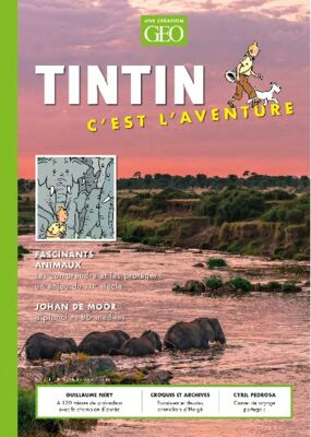 Tintin c'est l'aventure
