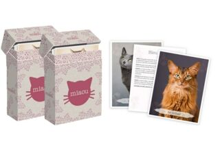 Boîtes de cartes Miaou