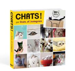 Chats ! Par @cats_of_instagram