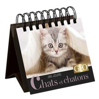 Calendrier perpétuel Chats et Chatons 2020