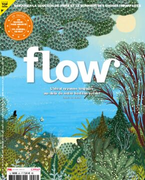 Flow n°46