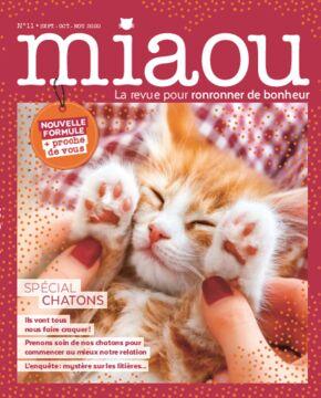 Miaou n°11