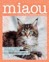 Miaou n°13