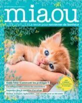 Miaou n°15