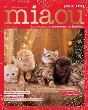 Miaou n°4