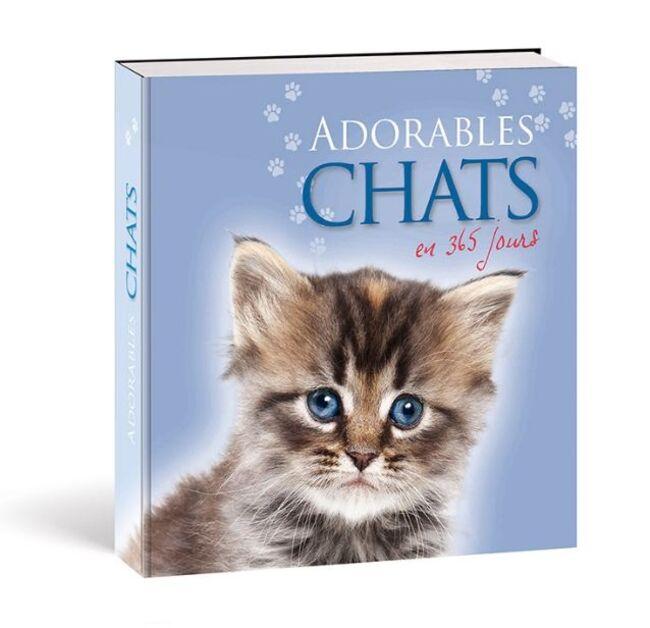 adorables-chats-en-365-jours
