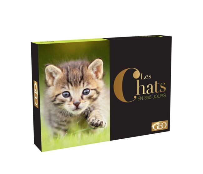calendrier-perpetuel-les-chats