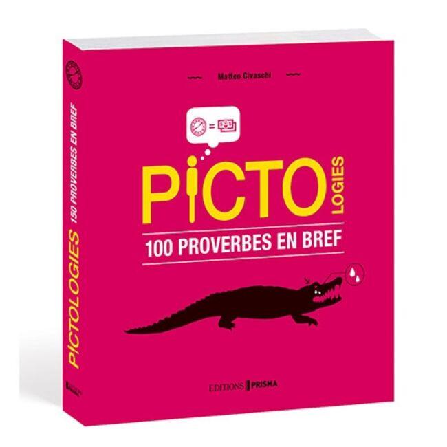 Pictologies : 100 proverbes en bref