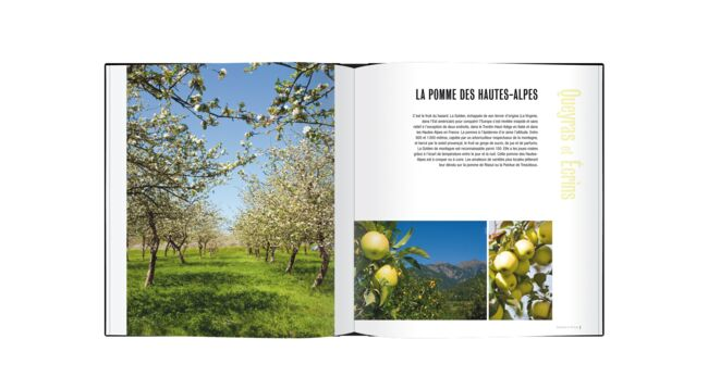 Saveurs Provence